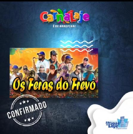 Os Feras do Frevo animam o carnaval