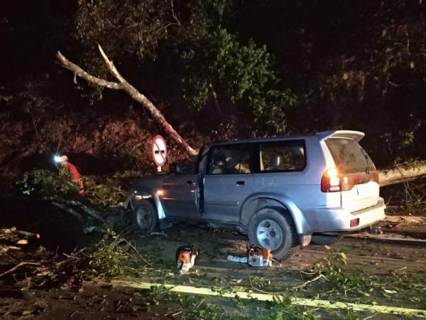 Carro colide em árvore e quatro pessoas ficam feridas na BR-104, em Murici