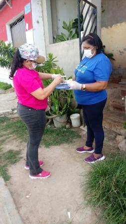 Prefeitura de União dos Palmares finaliza segunda etapa de ação em combate às moscas