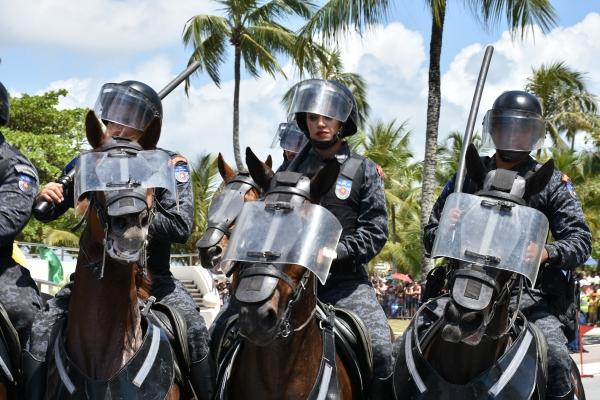 Segurança Pública conta com o auxílio dos animais para salvar e proteger vidas em Alagoas